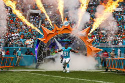 Miami-Dolphins-Playing-Field-Entrance-Versa-Truss-Small